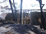 Poly Tanks in a Bush Fire